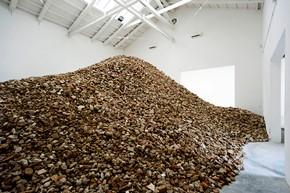 Biennale-2013